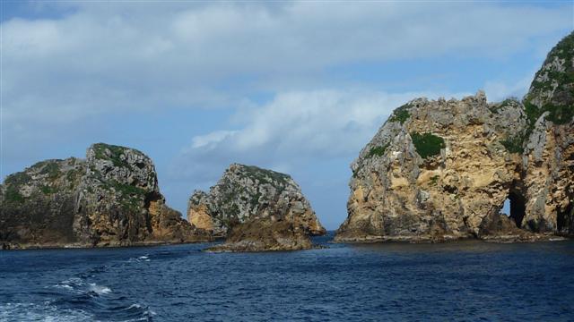 Poorknights Islands
