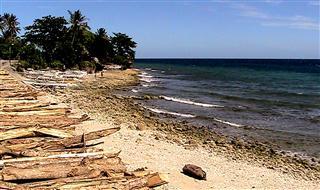 Beach_near_Jagna
