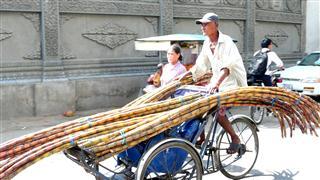 Cyclo_bamboo