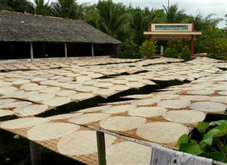 Drying_Rice_Paper