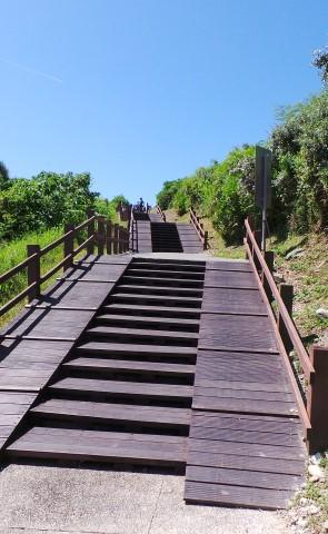 Bike way with steps?