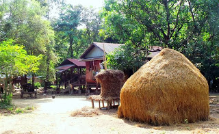 Traditional Karen farmstead