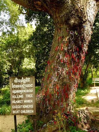Killing_Fields_Tree
