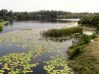 Lagoon_near_Binh_Chau