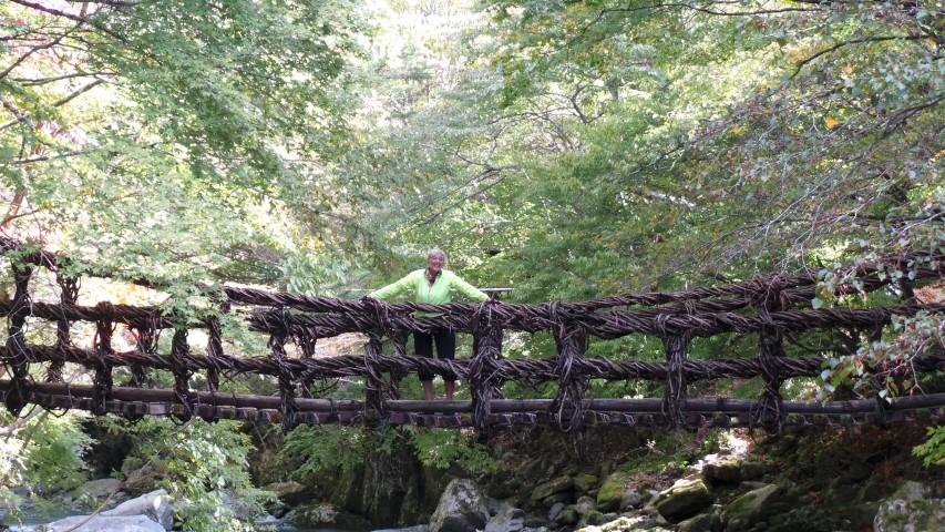 Male Vine Bridge