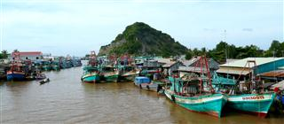 River_Boats