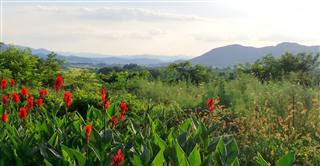 Dusk views approaching Sangju