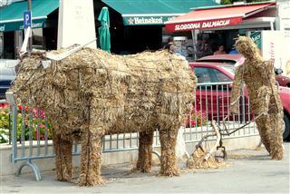 Biograd - Straw Bull