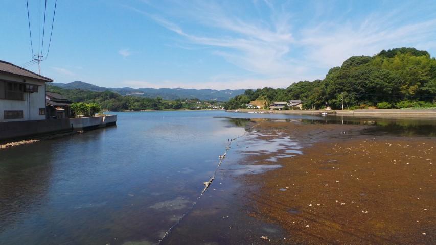 Tranquil Omura Bay