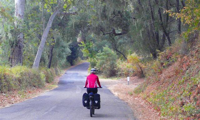 Alisal Road