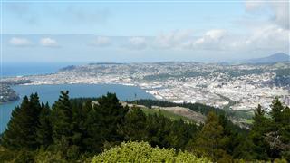 View over Dunedin