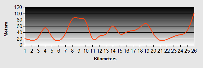 Matakohe to Brynderwyn Ride Profile