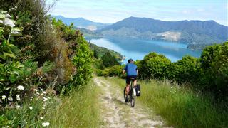 Descending Queen Charlotte Track