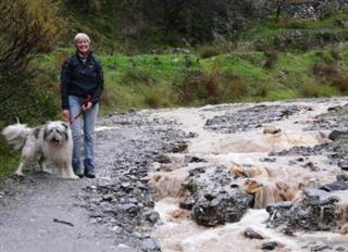 Rambla in Flood