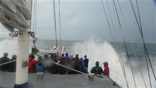 The Tasman Sea