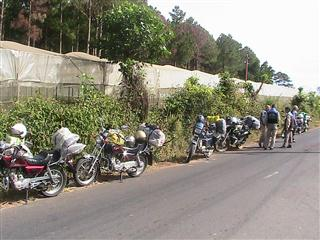 Easy_Riders