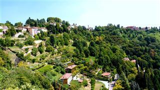 Vineyards Above Bergamo