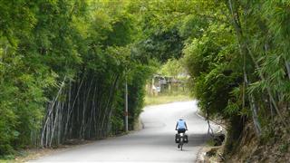 guangxi_bamboo_arches