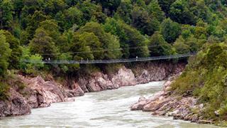 longest_nz_swing_bridg